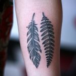 Feather and fern leave tattoo