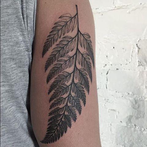 Fern leaf tattoo on the arm