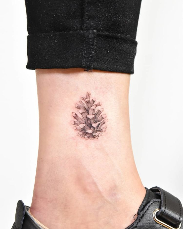 Conifer cone tattoo on the ankle