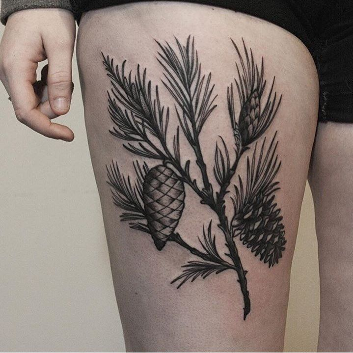 Pine branch with cones tattoo