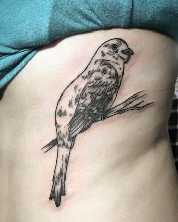 Bird tattoo on the rib