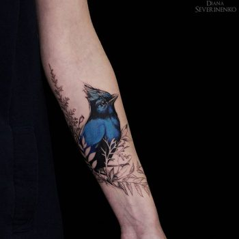 Blue colored bird on the branch