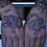 Join or die snakes tattoo
