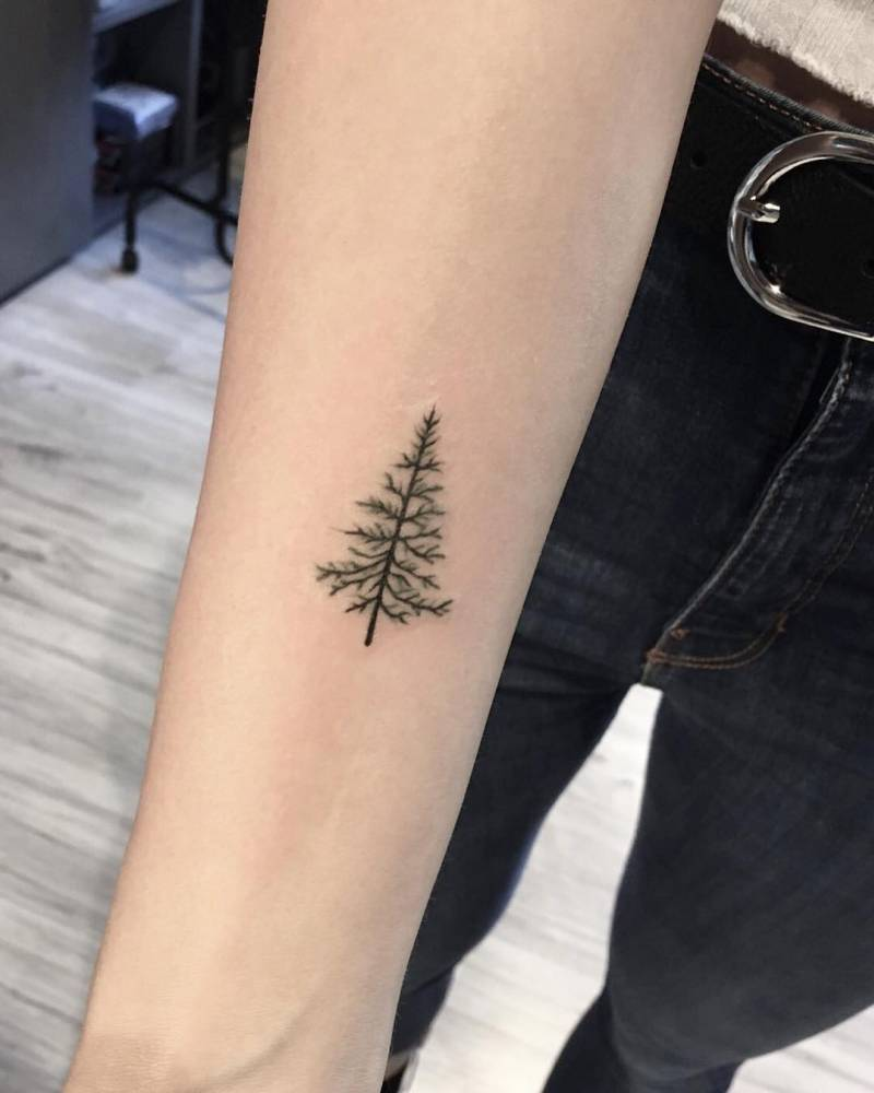 Small pine tree tattoo on the inner forearm
