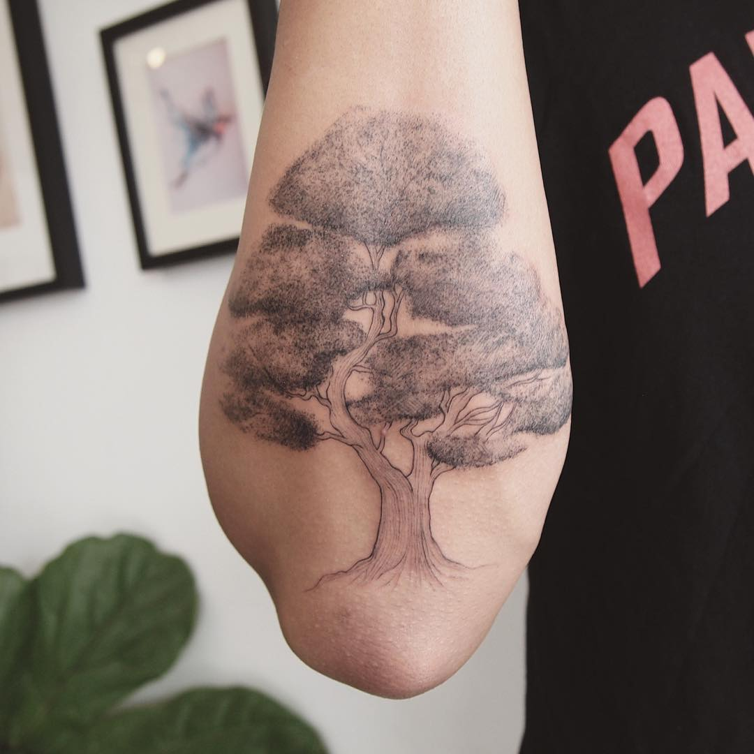 Bonsai tree tattoo on the forearm