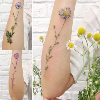 Chamomile real flower tattoo
