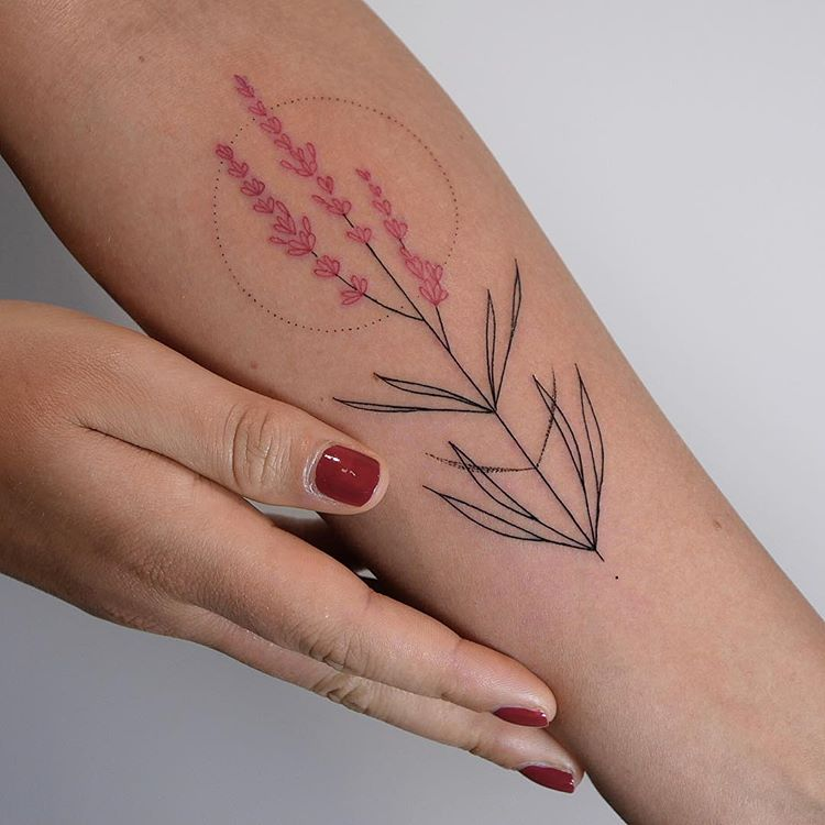 Delicate black and red plant tattoo