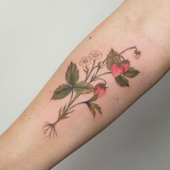Delicate strawberries tattoo