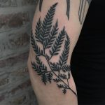 Dotwork style black branch with leaves tattoo