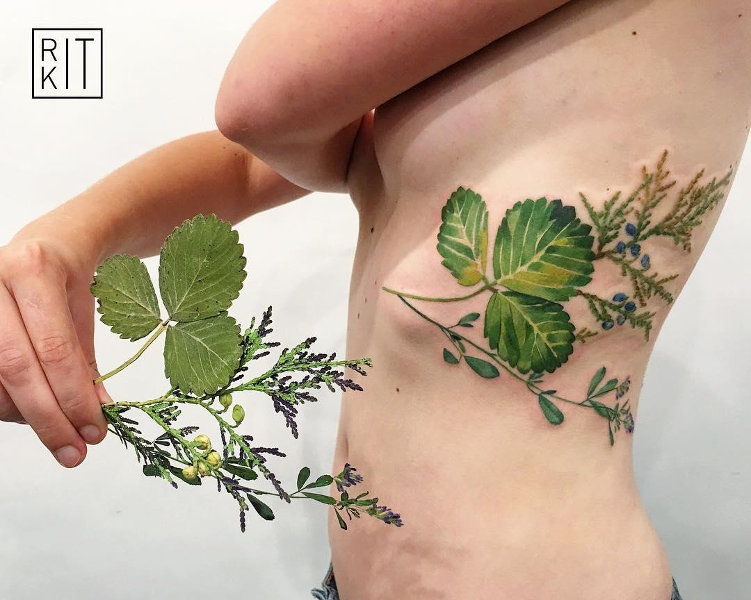 Strawberry leaf thuja and alfalfa tattoo