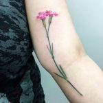 Wild carnation tattoo on the arm