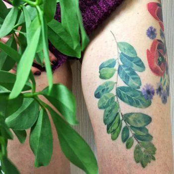 Acacia leaf tattoo