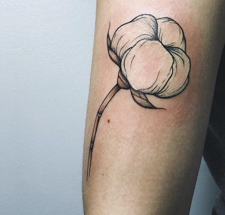 Cotton plant tattoo