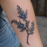 Juniper branch tattoo