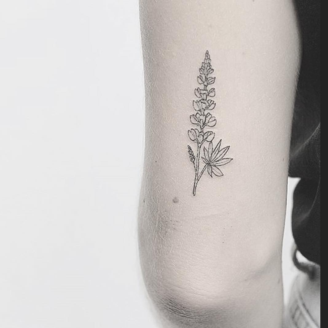 Lupine flower tattoo by lindsay april