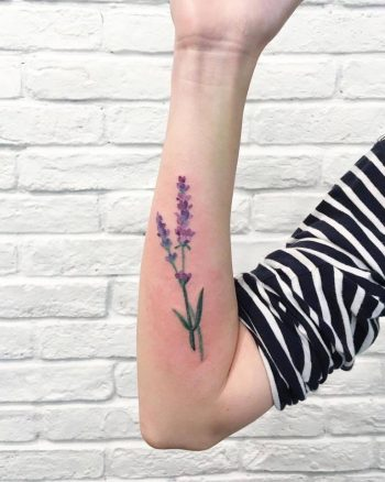 Watercolor lavender tattoo on the forearm