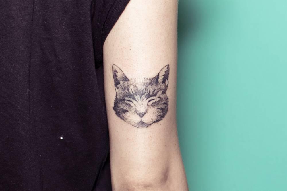 Hand poked sleepy cat portrait tattoo on the arm