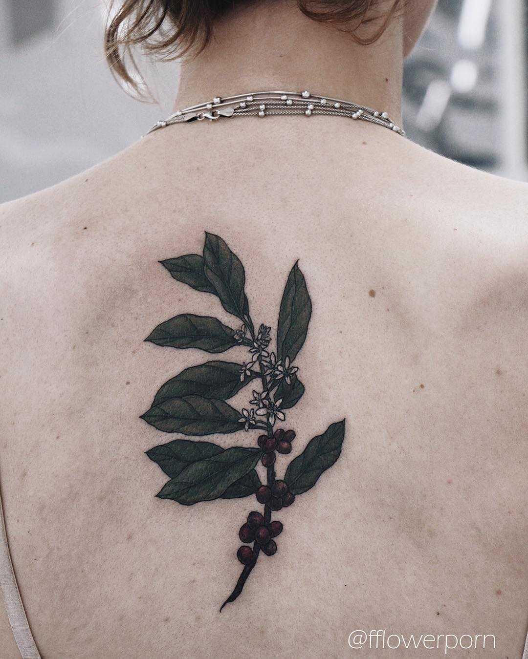 Coffee plant tattoo