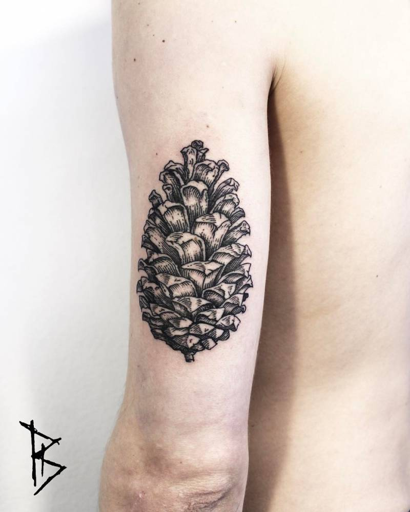 Conifer cone tattoo by loïc lebeuf