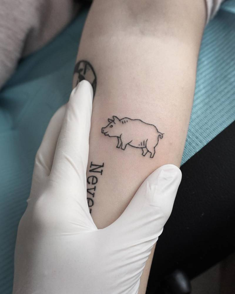 Hand poked tiny pig tattoo