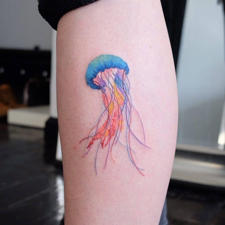 Jellyfish by zihee