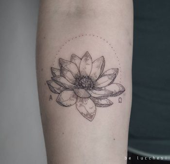 Lotus flower by be lucchesi