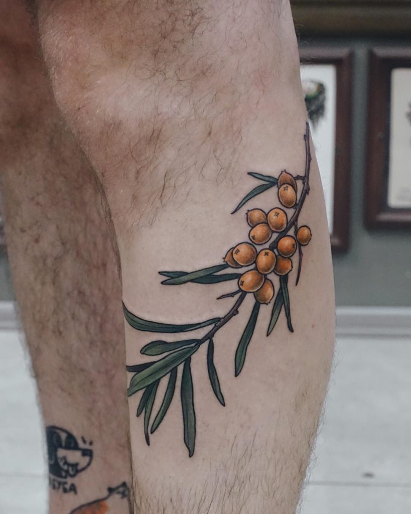 Sea buckthorn tattoo on the calf