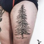 Spruce tree tattoo by loïc lebeuf