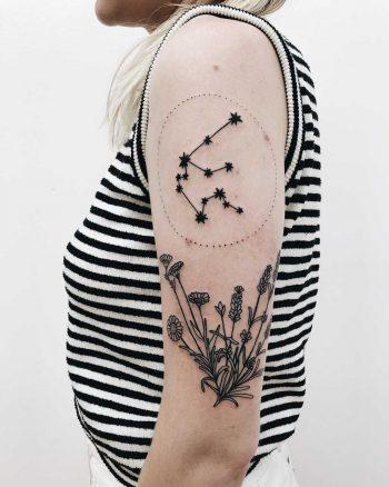 Aquarius constellation and wild flowers