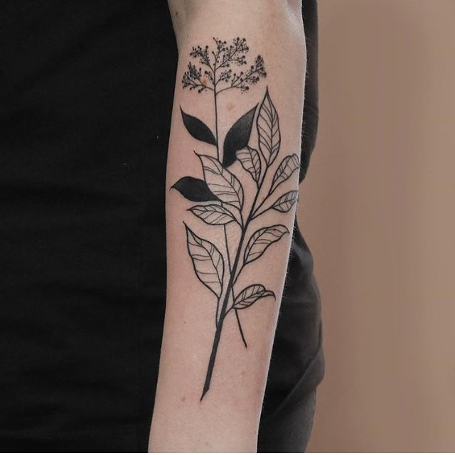 Black and white wildflowers on the forearm
