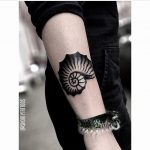 Blackwork shell tattoo by ana
