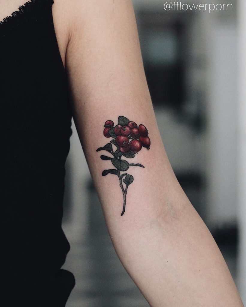 Cowberry tattoo on the left arm