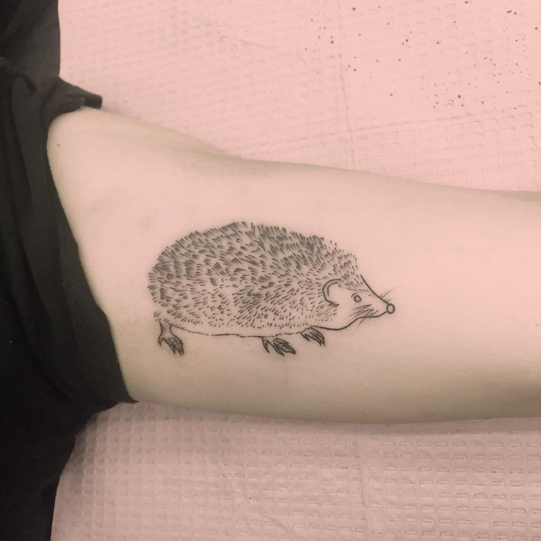 Cute hedgehog tattoo by Jen Wong