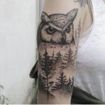 Owl and trees by Roald VD Broek