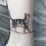 Realistic cat tattoo by Zheremo