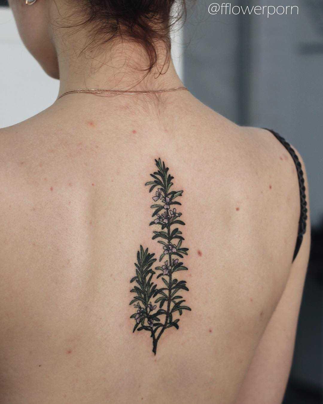 Rosemary tattoo on the back