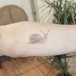 Snail tattoo by sarah march