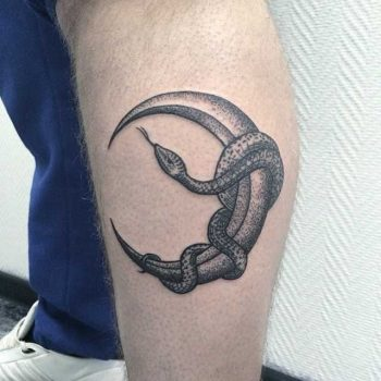 Snake wrapped around the moon