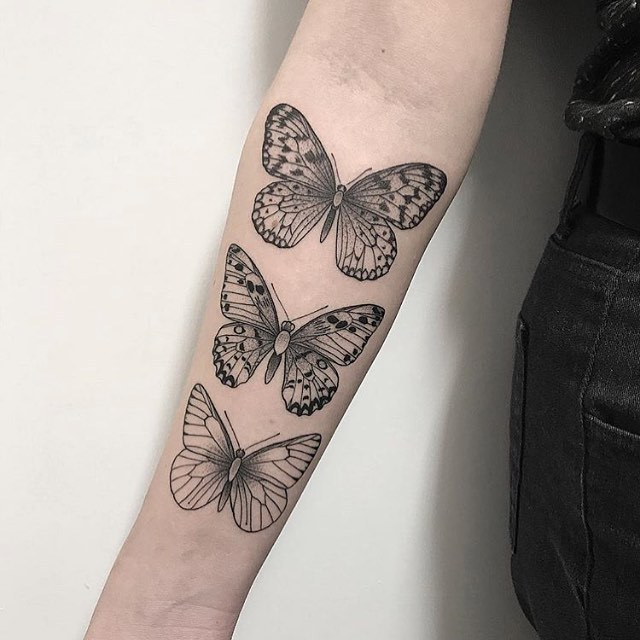 Three butterflies by M FOX