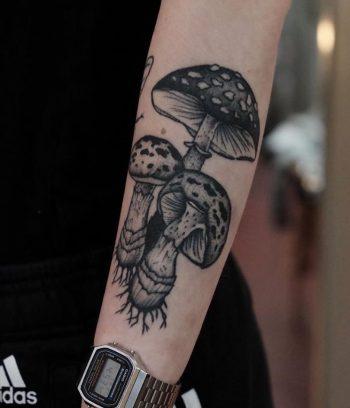 Three mushrooms by Roald Van Broek