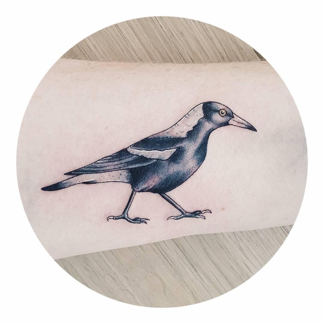 Australian Magpie tattoo