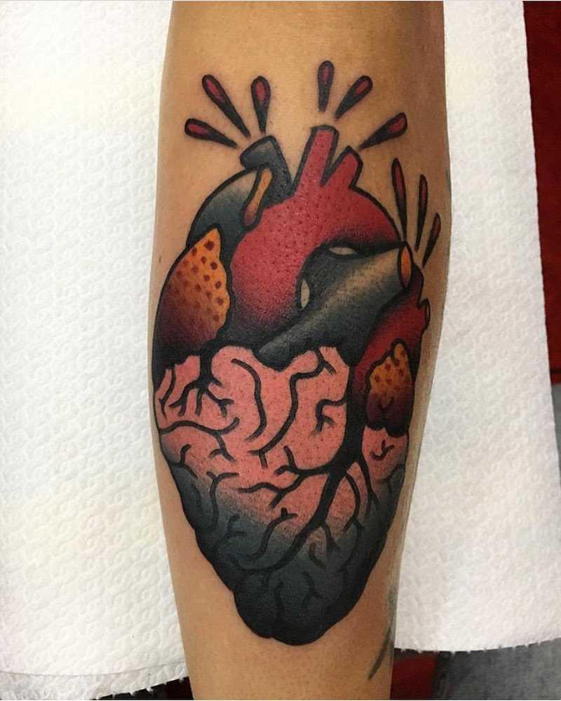 Classy anatomical heart by Jeroen Van Dijk