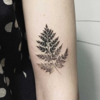 Dot-work branch with leaves by Zszywka Blackbear Studio