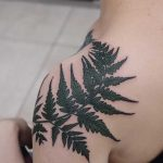 Fern leaf tattoo on the shoulder