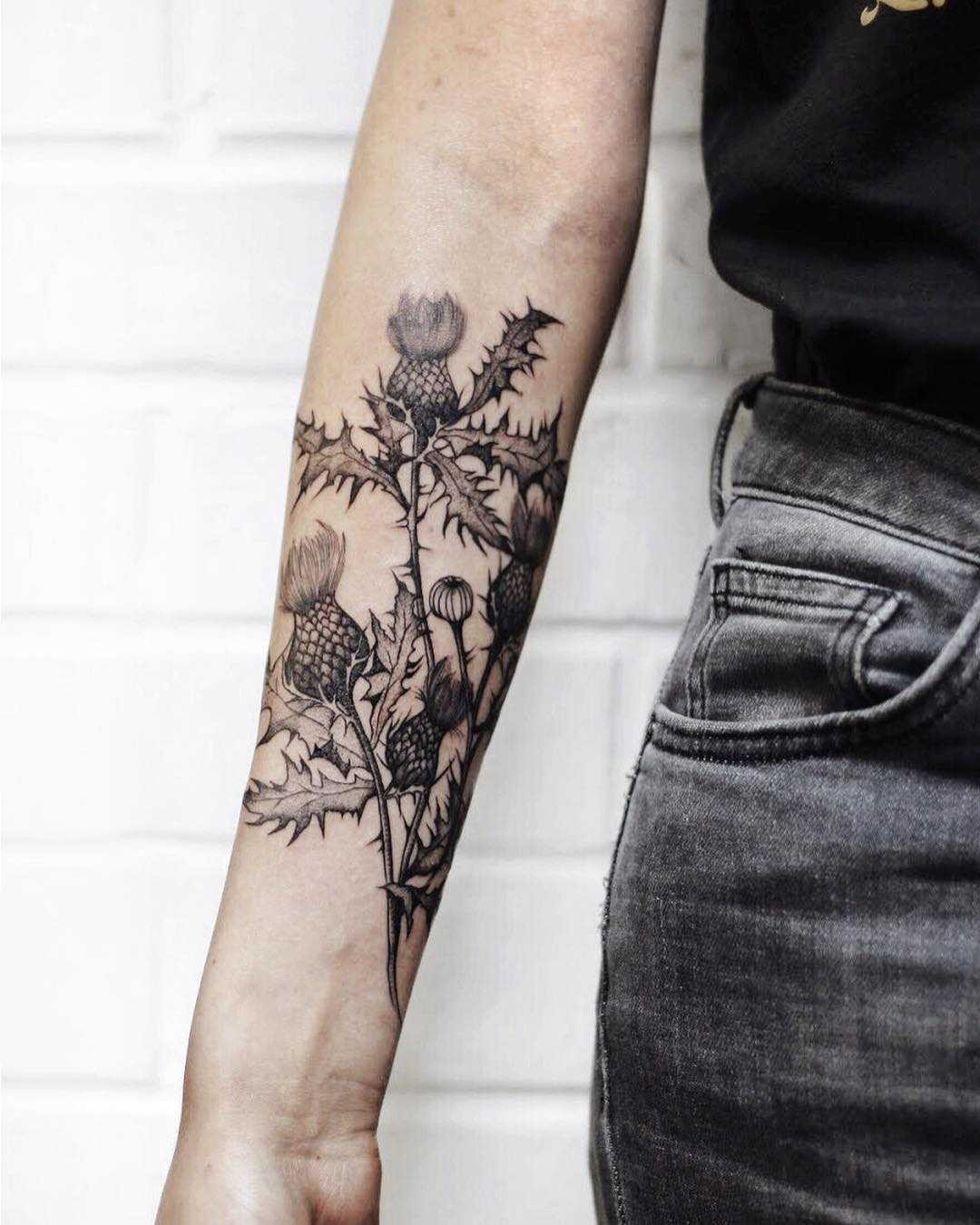 Thistle as national symbol of Scotland tattoo