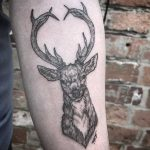 Blackwork stag tattoo