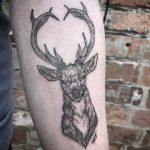 Blackwork stag tattoo