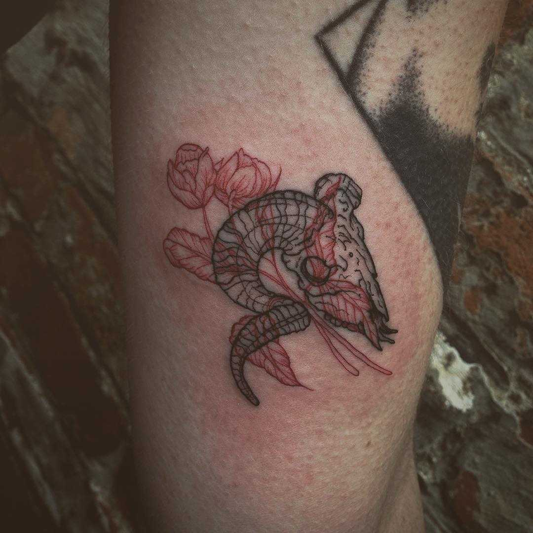 Goat skull and two roses tattoo