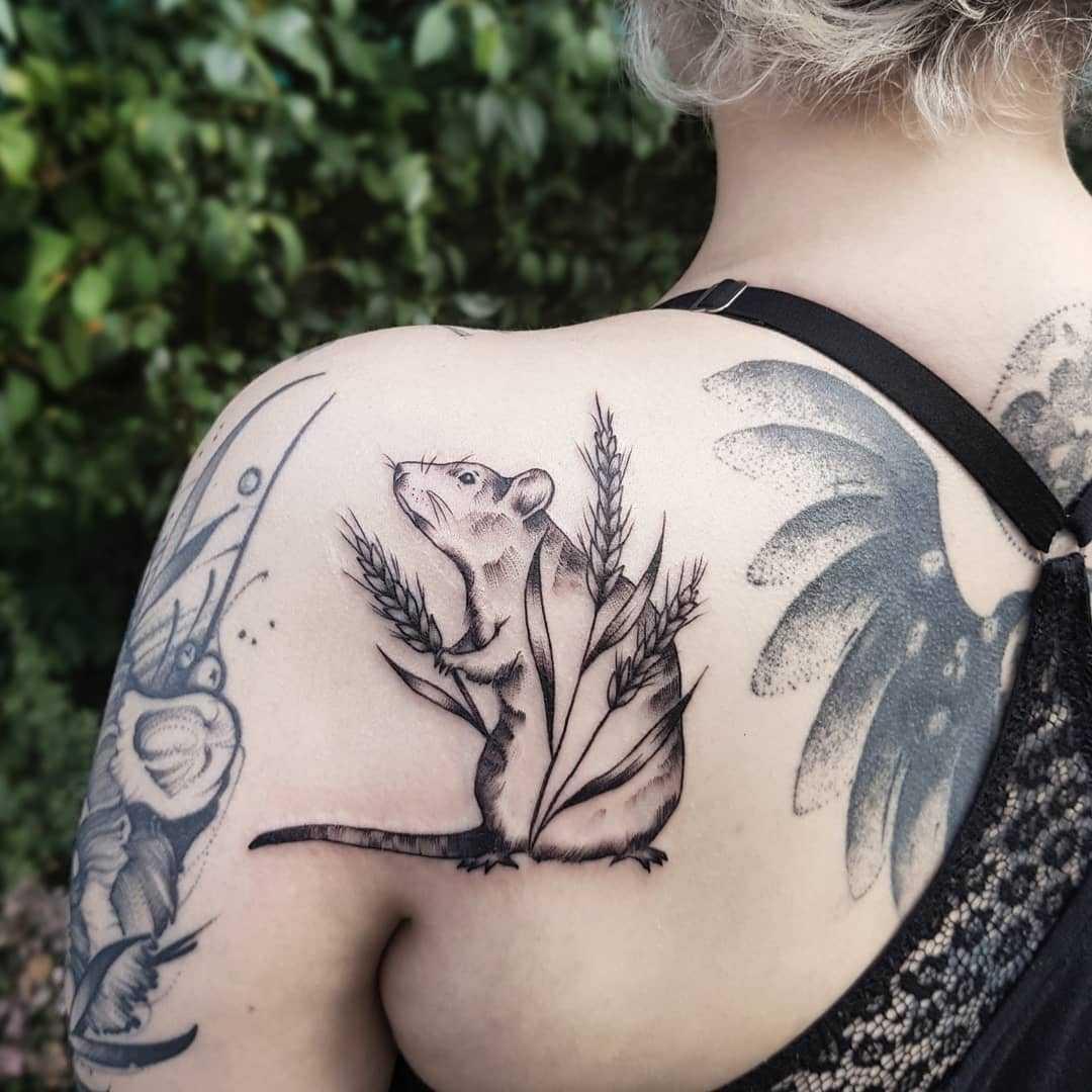 Rat And Wheat Tattoo Tattoogrid Net