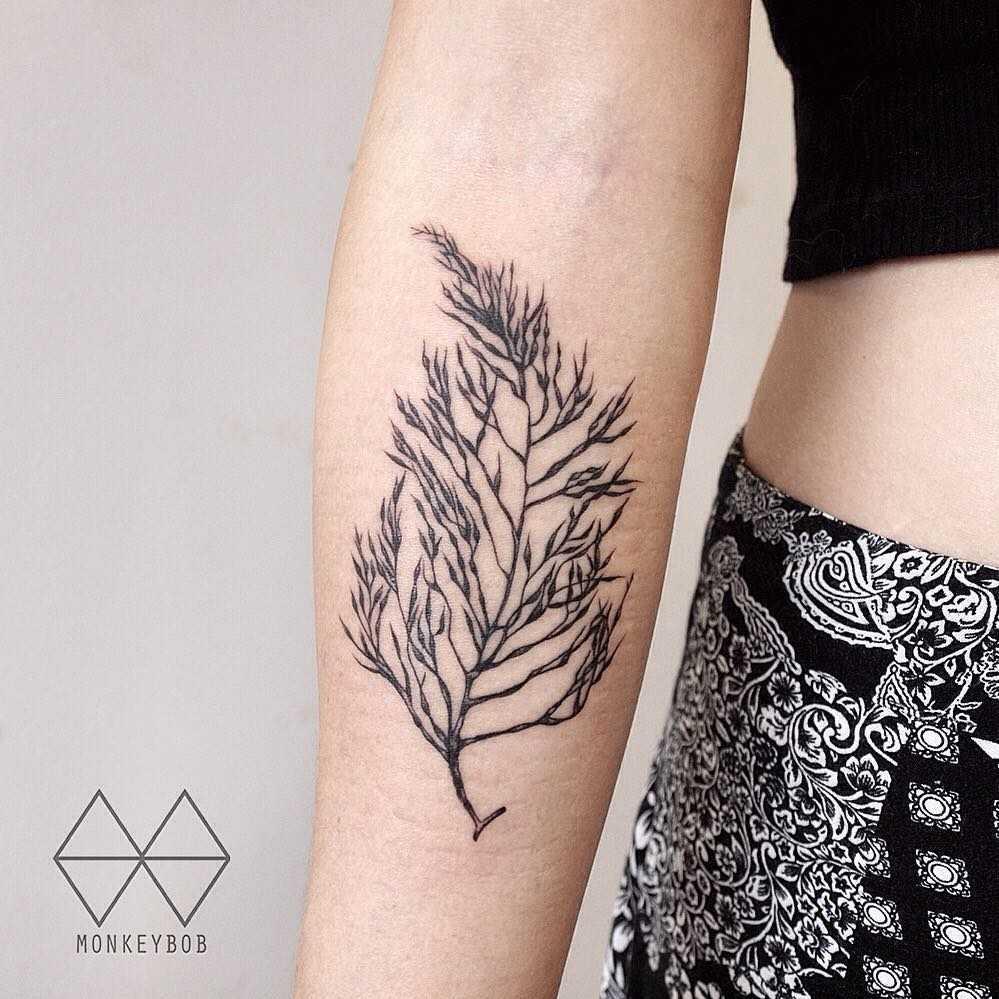 Seaweed tattoo on the forearm